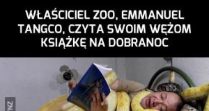 Węże tez potrzebują bajki na dobranoc