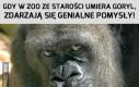 Najdzielniejszy pracownik zoo na świecie