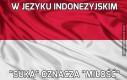 W języku indonezyjskim