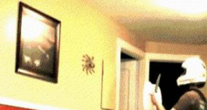 Jak nie łapać pająków