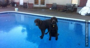 I co z naszym pływaniem?
