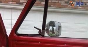 Pomysłowy kierowca
