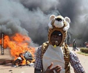 Dziwny tygrysek sieje postrach w Afryce