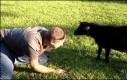 Walka z kozłem