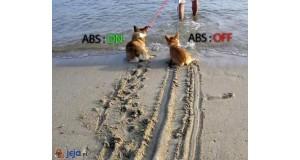 Jak działa ABS
