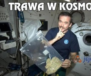 Trawa w kosmosie