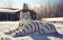 Bałwano tygrys