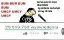 Polski Youtube w skrócie