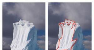 Koci lodowiec