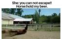 Ja nie ucieknę?! Przytrzymaj mi piwo