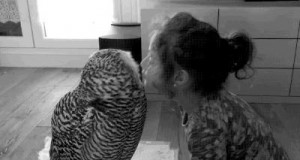 Daj buziaka