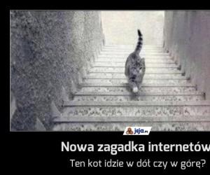 Nowa zagadka internetów!