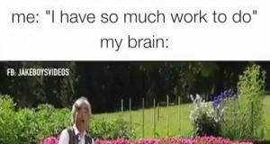 Mój mózg vs obowiązki
