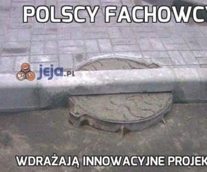 Polscy fachowcy