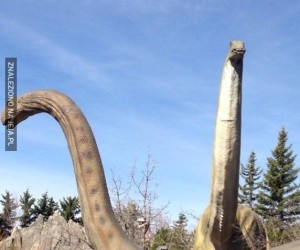 Tymczasem w parku dinozaurów...
