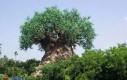 Artystyczne drzewo