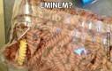 Eminem?