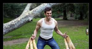 Francuski Wolverine