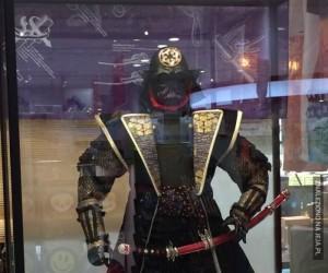 Samuraj Vader
