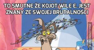 To smutne że Kojot Wile E. jest znany ze swojej brutalności