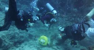 Misja wykonana, znaleźliśmy SpongeBoba