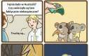 Prawdziwe zwierzęta