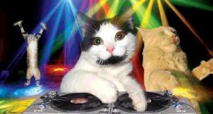 Najlepszy DJ w mieście