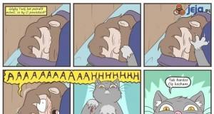 A gdyby Twój kot potrafił mówić?