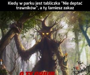 Strażnik lasu czuwa
