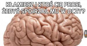 Dzięki, mózgu...