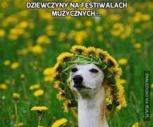 Dziewczyny na festiwalach muzycznych....