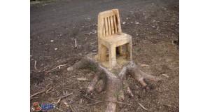 Krzesło wystrugane w drzewie