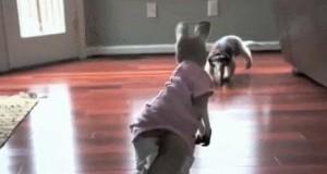 No dawaj, kangur, gdzie uciekasz?