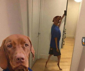 Selfie roku
