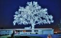 LEDowe drzewko