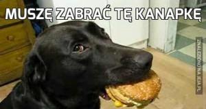 Muszę zabrać tę kanapkę