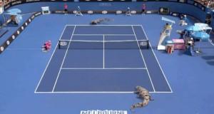 Gadzi tenis