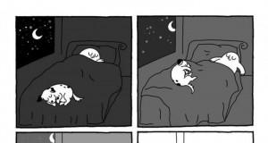 Spanie z psem takie jest