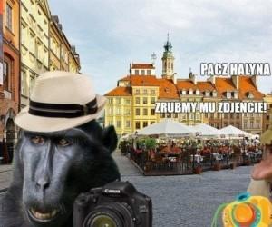 Janusz i Halyna na wakacjach