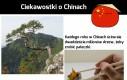 Ciekawostki o Chinach