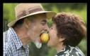 Ty widzisz tutaj parę kochających się staruszków...