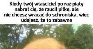Janusz, jesteś taki oryginalny