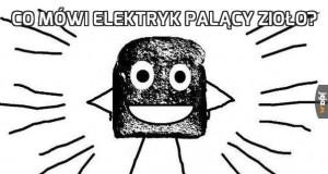 Co mówi elektryk palący zioło?