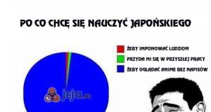 Po co chcę się nauczyć japońskiego