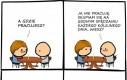 Poproszę rachunek!