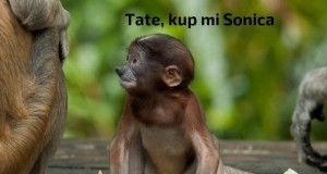 Tate, to nie ten Sonic...