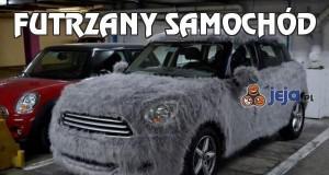 Futrzany samochód