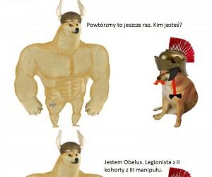 Biedny Obelix