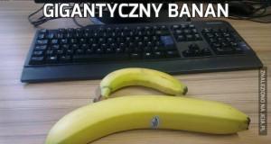Gigantyczny banan