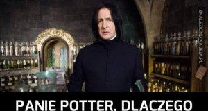 10 punktów dla Gryffindoru!